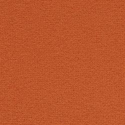 tonus-4-0554