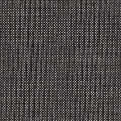 canvas.0154