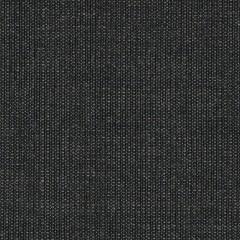 canvas.0174