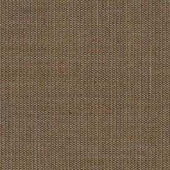 canvas.0254