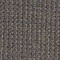 canvas.0264