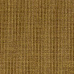 canvas.0424