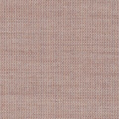 canvas.0614