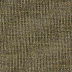 canvas.0964