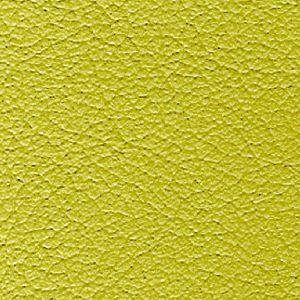 nuvola.118. lichene