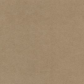 alcantara® camel (1070)