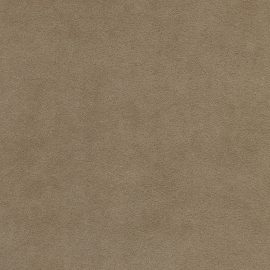alcantara® cappuccino (1112)